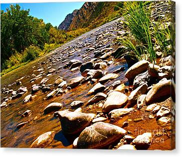 Rio Grande Above Santa Fe Canvas Print by Chuck Taylor