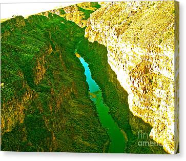 Rio Grande Gorge Canvas Print by Chuck Taylor
