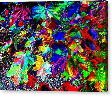 Riot Of Color Canvas Print by Will Borden