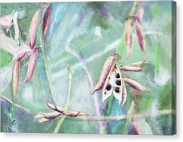 Ripe Seeds Canvas Print