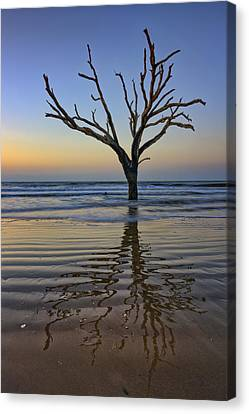 Rippled Reflection - Botany Bay Canvas Print