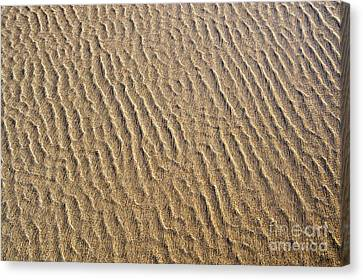 Ripples In The Sand Canvas Print by Tim Gainey