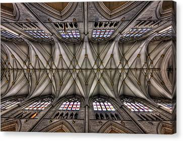 Ceiling Canvas Print - Rise Above by Evelina Kremsdorf
