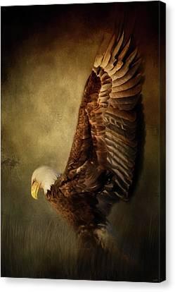 Rise Up Bald Eagle Art Canvas Print by Jai Johnson