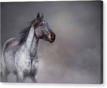 Rising From The Mist Canvas Print by Debby Herold