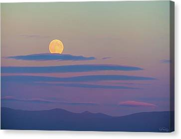Rising Harvest Moon  Canvas Print