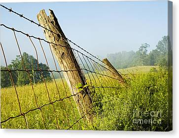 Rising Mist With Falling Fence Canvas Print by Thomas R Fletcher