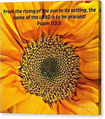 Rising Of The Sun Canvas Print