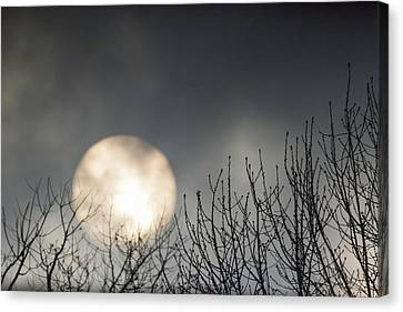 Mystic Setting Canvas Print - Rising Sun Moody Sky Gray by Terry DeLuco