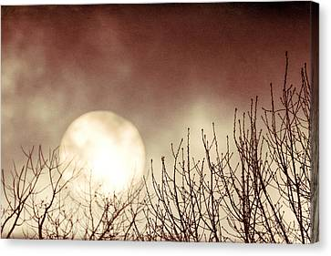 Rising Sun Moody Sky Canvas Print by Terry DeLuco