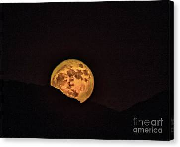 Rising Supermoon Canvas Print