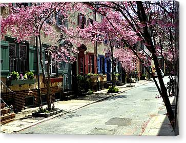 Rittenhouse Square Neighborhood Canvas Print