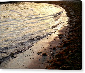 River Beach Canvas Print