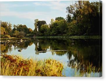 River Bypass Canvas Print by Pamela Patch