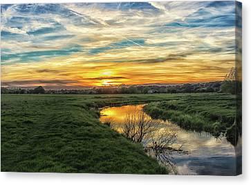 River Colne Essex Canvas Print by Martin Newman