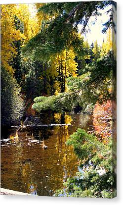 Canvas Print featuring the photograph River Colors by Lynn Bawden