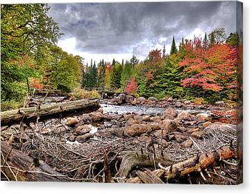 Canvas Print featuring the photograph River Debris At Indian Rapids by David Patterson