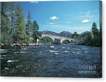 River Dee At Invercauld Old Brig  Canvas Print by Phil Banks