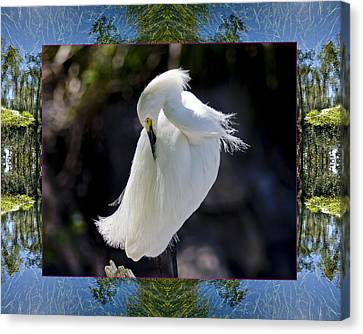 Canvas Print featuring the photograph River Egret by Bell And Todd