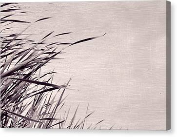 Canvas Print featuring the photograph River Grass by Michelle Calkins