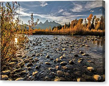 River In The Tetons Canvas Print
