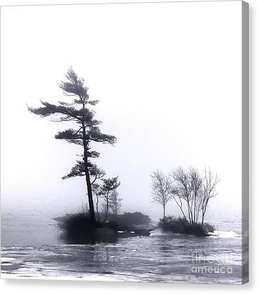 Maine Winter Canvas Print - River Islands In Fog by Olivier Le Queinec