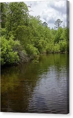 River Landscape Canvas Print