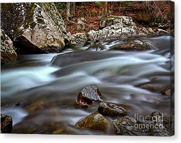 Canvas Print featuring the photograph River Magic by Douglas Stucky