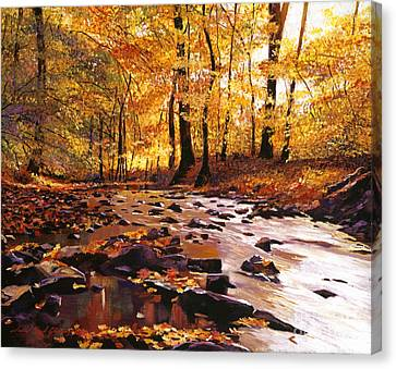 River Of Gold Canvas Print by David Lloyd Glover