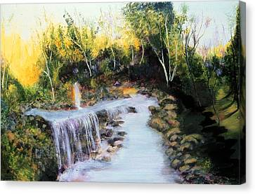 River Of No Return   Canvas Print by Ione Citrin