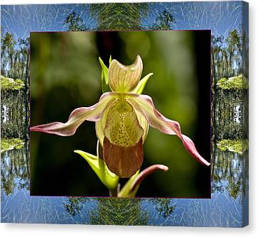 Canvas Print featuring the photograph River Orchid by Bell And Todd