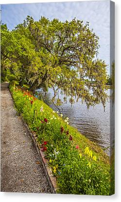 Canvas Print featuring the photograph River Path 1 by Steven Ainsworth