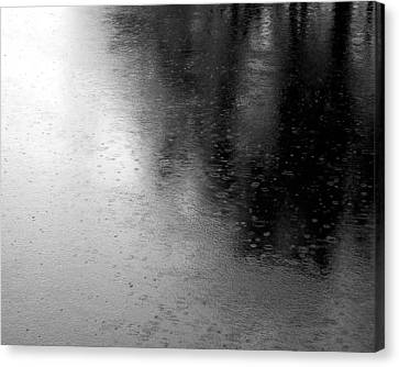 River Rain  Naperville Illinois Canvas Print by Michael Bessler