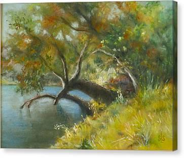 River Reverie Canvas Print