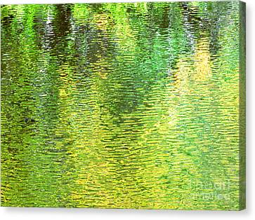 River Sanctuary Canvas Print