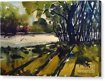River Shadows Framed Matted Glassed Canvas Print