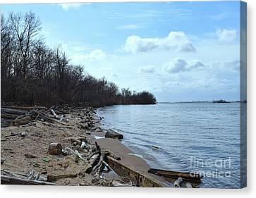 Delaware River Shoreline Canvas Print