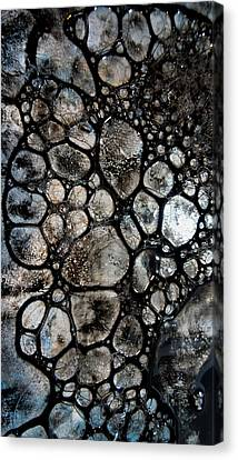 River Stone 14 Canvas Print by Tia Marie McDermid