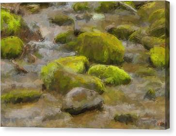 River Stones Canvas Print by Paul Bartoszek