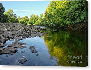 River Swale, Easby Canvas Print by Nichola Denny