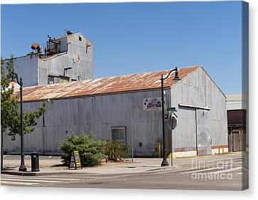 River Town Feed And Pet Country Store In Petaluma California Usa Dsc3840 Canvas Print by Wingsdomain Art and Photography