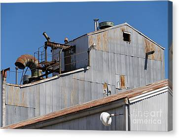 River Town Feed And Pet Country Store In Petaluma California Usa Dsc3842 Canvas Print by Wingsdomain Art and Photography