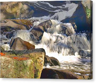 Canvas Print featuring the photograph River Wild by Raymond Earley