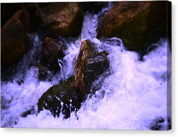 River's Dream Canvas Print by Nature Macabre Photography