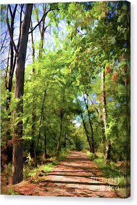 Canvas Print featuring the photograph Riverway Trail - Bisset Park - Radford Virginia by Kerri Farley