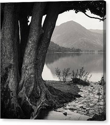 Dave Canvas Print -  Rivulet To Buttermere by Dave Bowman