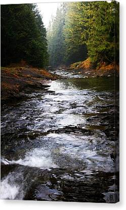 Rivulet Canvas Print by Votus