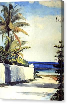 Nassau Canvas Print - Road In Nassau by Winslow Homer