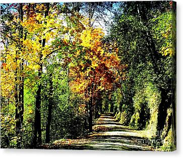 Canvas Print featuring the photograph Road Into Autumn by Terri Thompson