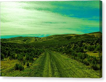 Road Into The Foothills Canvas Print